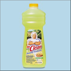 MR. CLEAN,28OZ